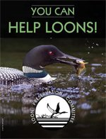 you-can-help-loons-pdf