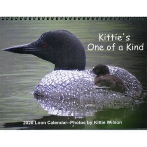 2020 Kittie's One of a Kind Calendar