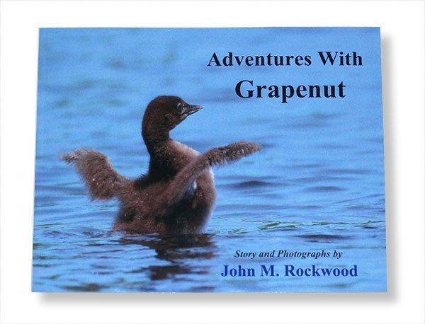 Adventures with Grapenut