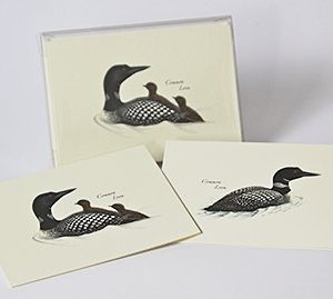 Boxed Loon Note Card Assortment