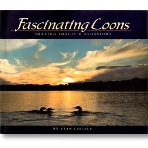 Fascinating Loons