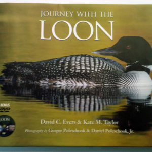 Journey with the Loon