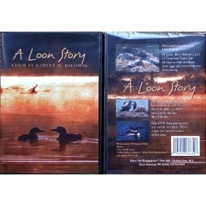 LOON STORY