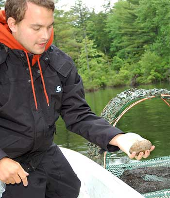 An LPC Biologist collects a failed loon egg to be tested for contaminants.