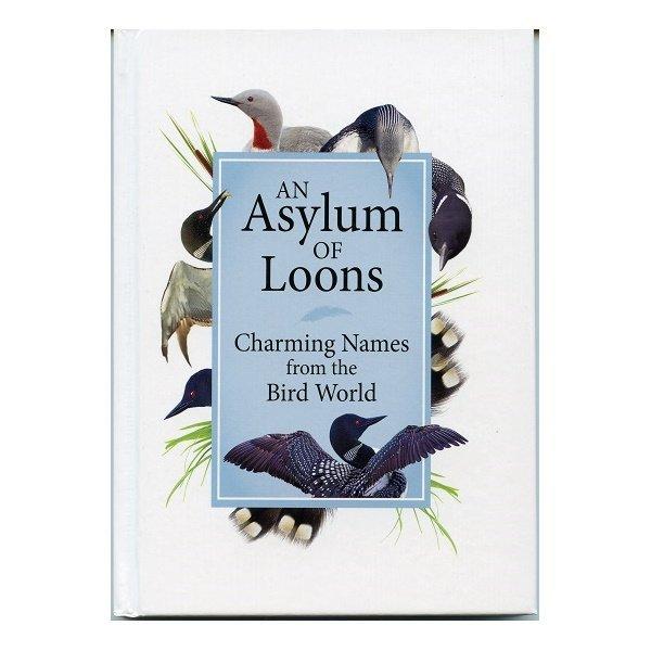 An Asylum of Loons