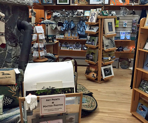 "While at the Loon Center, visit the Loon's Feather Gift shop where you will find ""all things loon"" and more!"