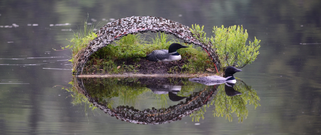 Loon Nest Rafts