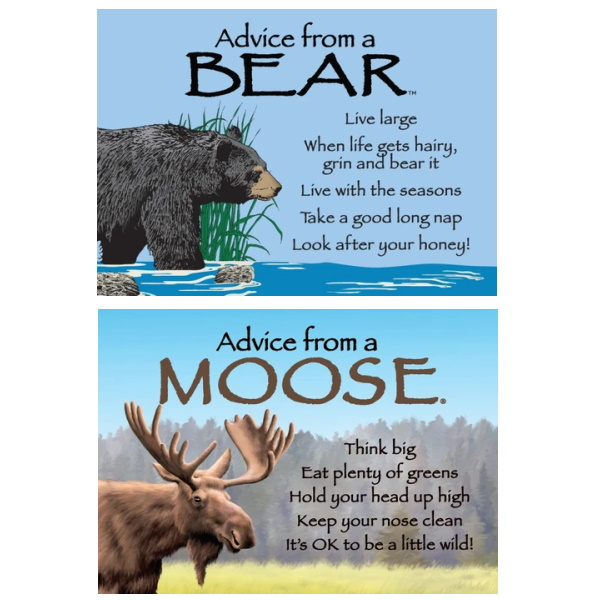 Advice from a Bear/Moose Magnet