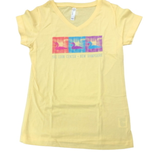 Loon Center Ladies' V-neck T-Shirt