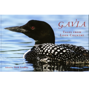 Cover image of Gavia - Tales from Loon Country