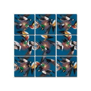 Waterbirds Scramble Squares Puzzle